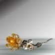crystal yellow rose/pewter